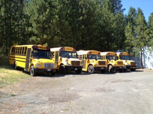 Picture of five school buses